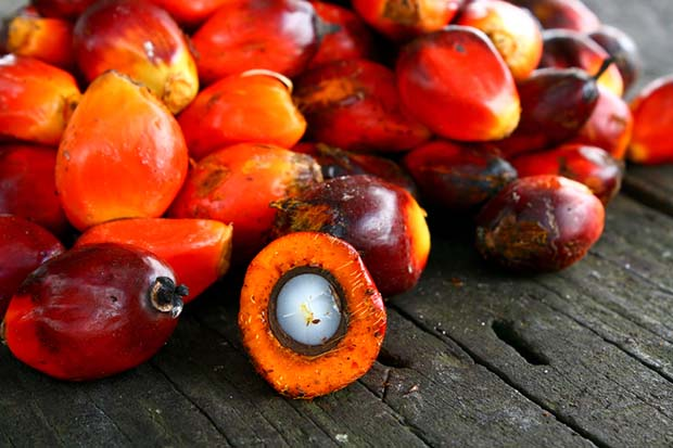 palm oil in soap making