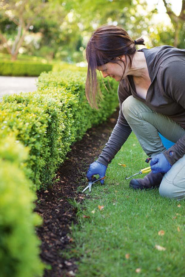 gardening at Olveston