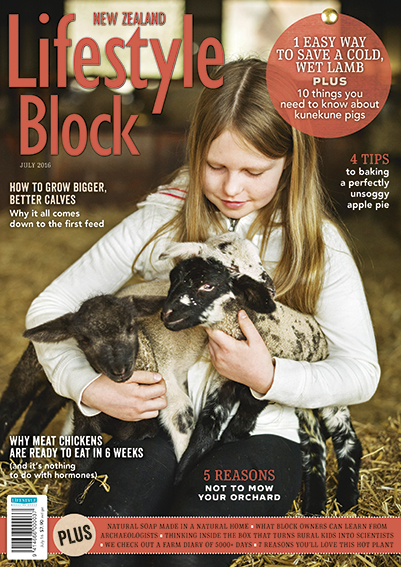 NZ Lifestyle Block, July issue