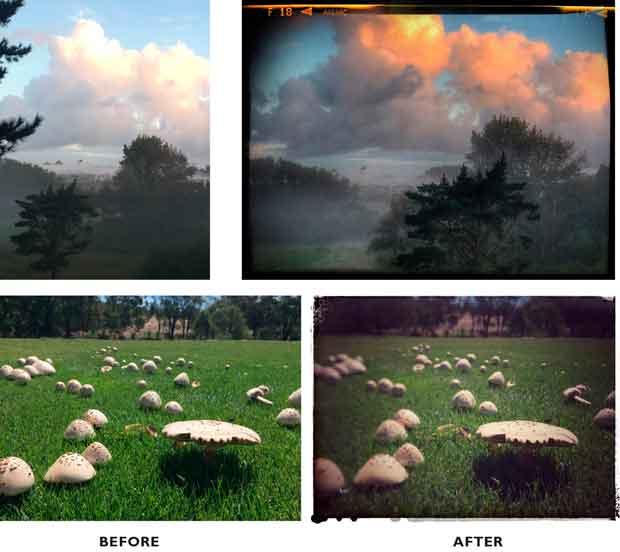 Photos taken using Snapseed.