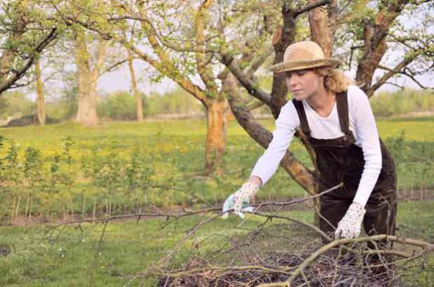 5 tools for pruning