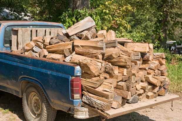 tips for looking after firewood