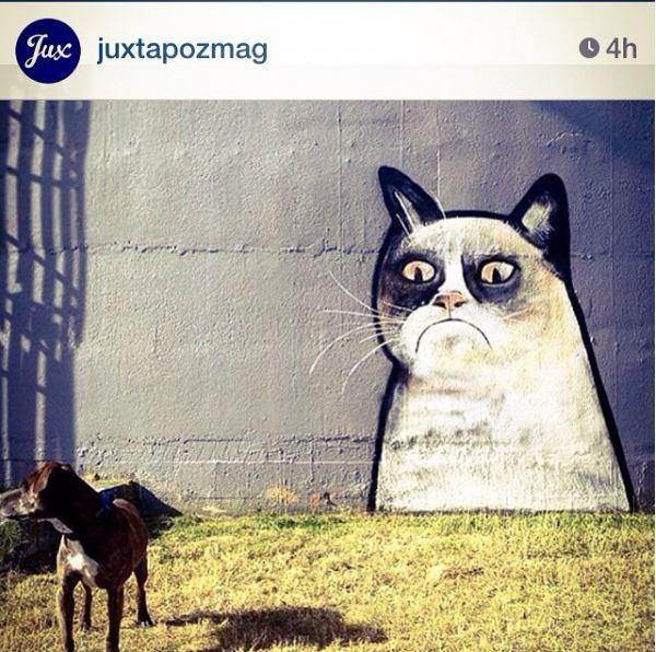 The Big King cat mural, Photo: Juxtaposemag instagram