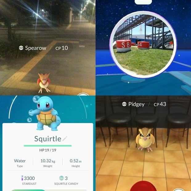 Pokemon around Auckland.