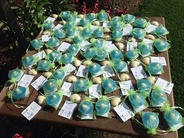 FeatureSoapGlow in the dark soaps sent to starship hospital as a gift for the kids at Starship Xmas.