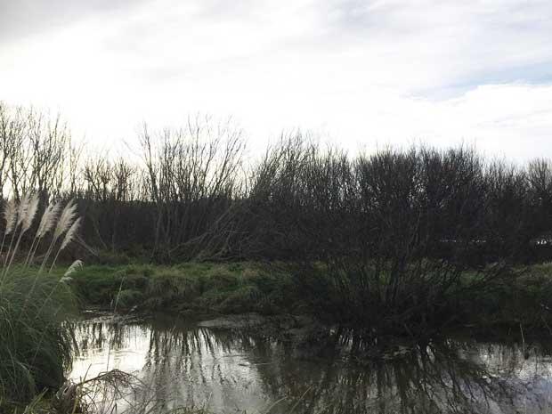 Te Araroa Trail.