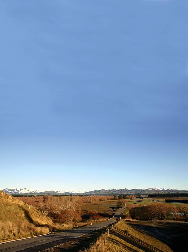 Feature - Organic vineyardWaipara Valley winter 2013_clone