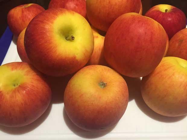 leftover apples