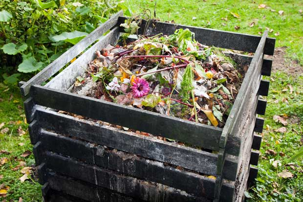 Composting is a great solution for managing waste, but are we also throwing out valuable food?