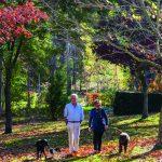 Patricky Rattray Marlborough Garden