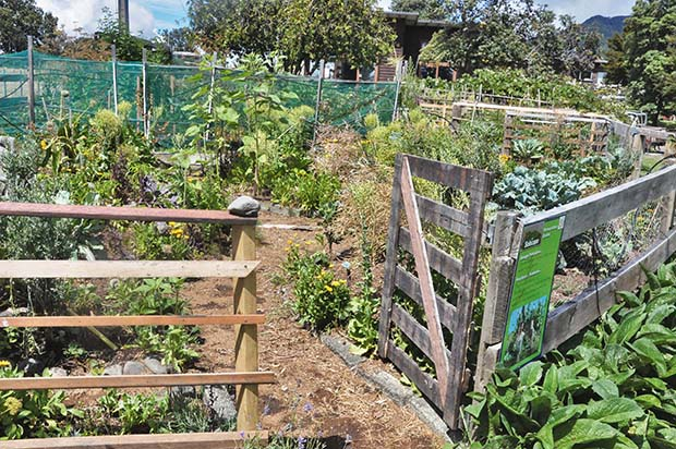 The gardens are based on permaculture principles, with signs explaining the basics to visitors.