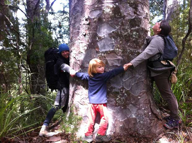 Friends Bernard, Toyah and Dylan hugging a kauri.