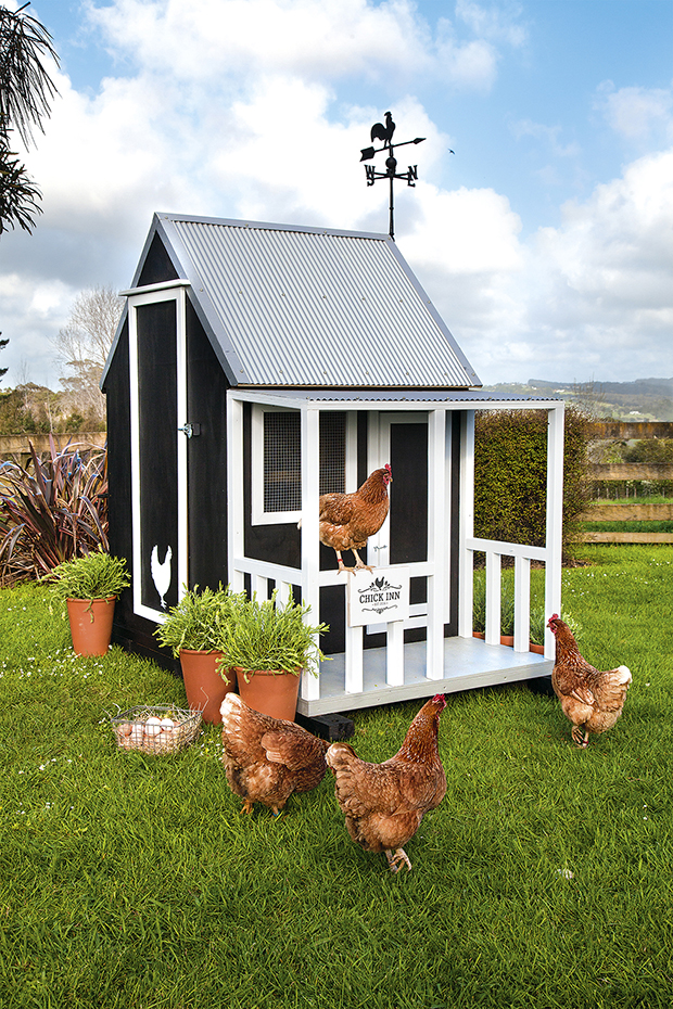 chickencoop8113016