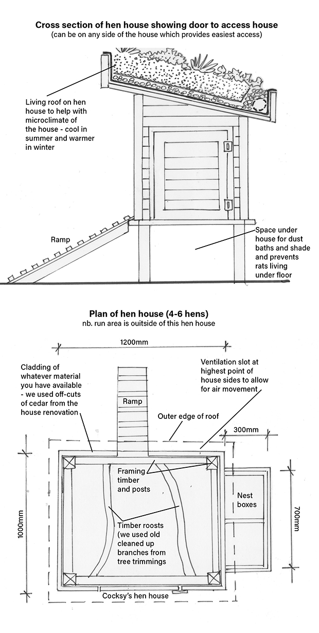Dimensions for chicken coop