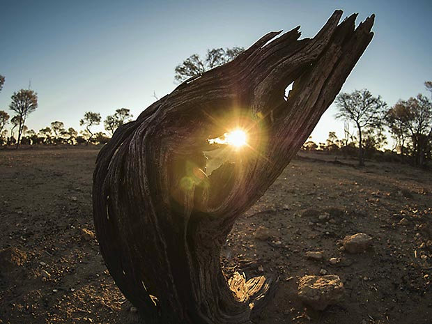 How to live in the Australian outback