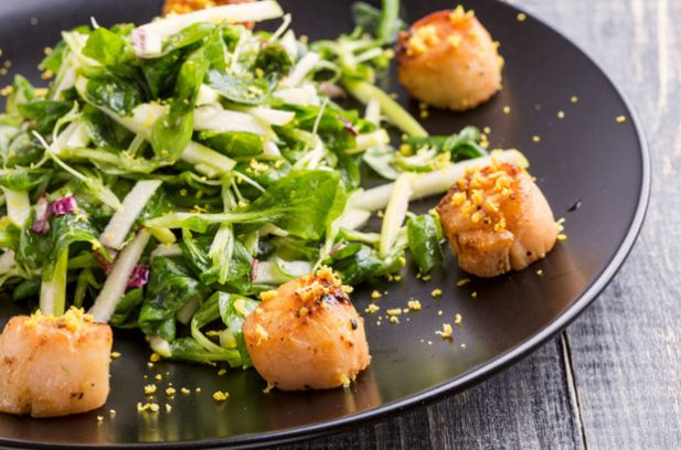 seared scallops and microgreens.