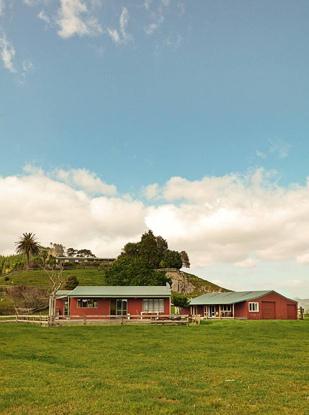 chris parry coromandel home