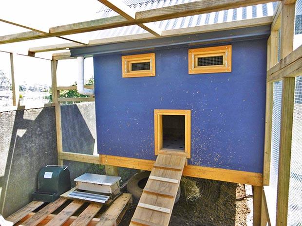 10 New Zealanders share their DIY coop designs - thisNZlife