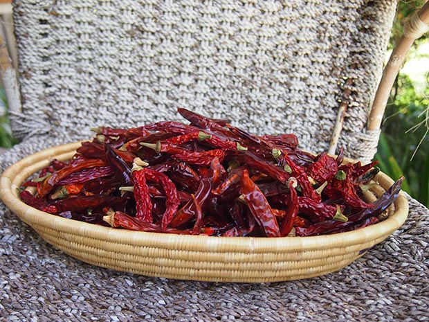 A batch of dried chillies.