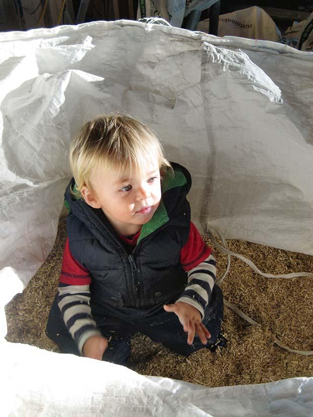 building a hemp house