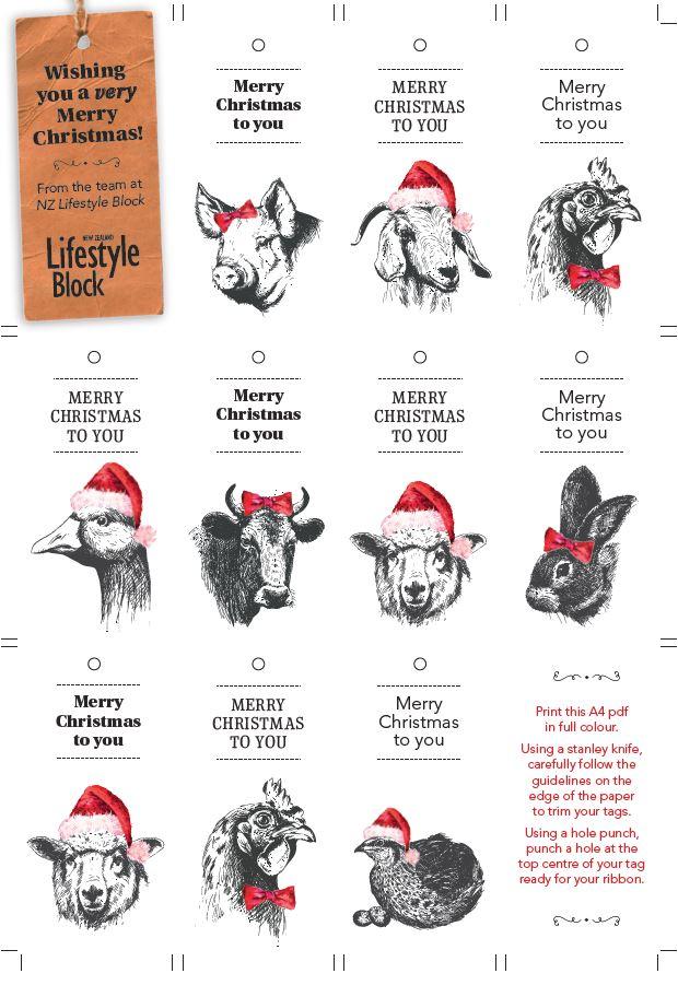 Printable animal christmas gift tags thisnzlife printable animal christmas gift tags negle Choice Image