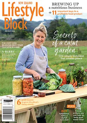 January 2018 NZ Lifestyle Block