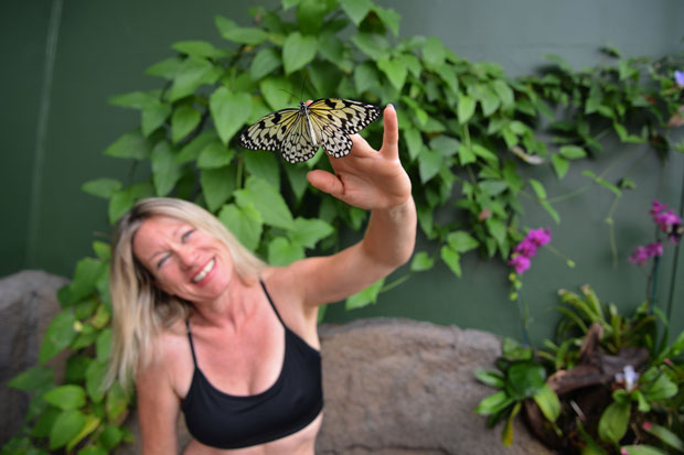 Lisa Scott yoga with butterflies