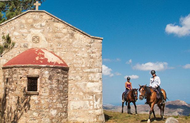 Crete horse