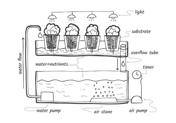 Ilustración hidropónica de reflujo y flujo.