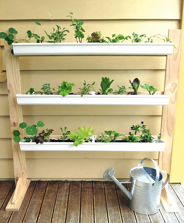 DIY Project: Build A Vertical Gutter Garden For Growing Salad Greens
