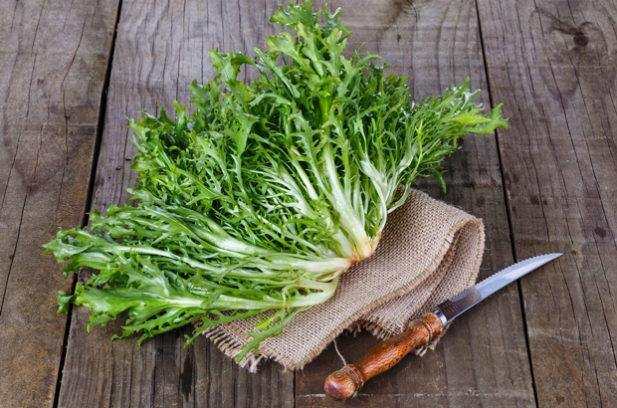 Endive salad green