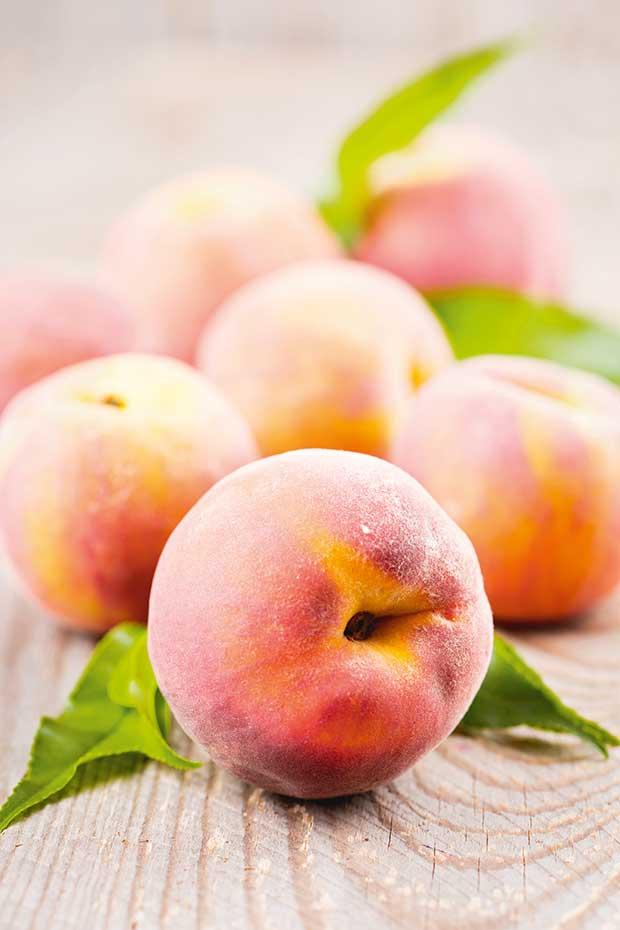 peach peaches how to prune