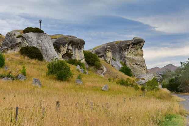 Frog Rock New Zealand